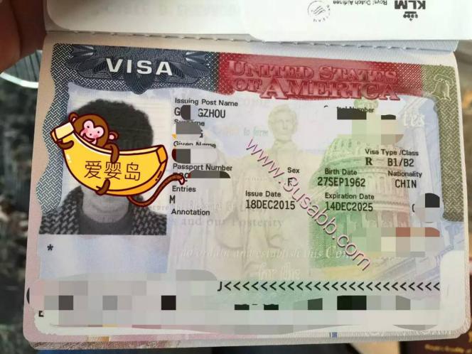 加拿大生子客户visa(一)