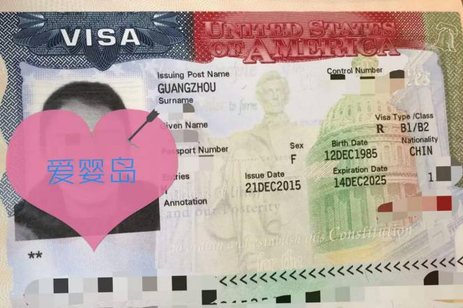 加拿大生子客户visa(三)