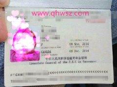 山东加拿大生子客户H小姐加籍宝宝旅行证